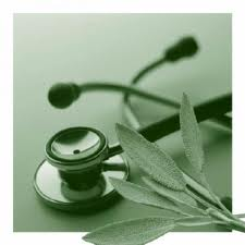 green stethescope and leaf